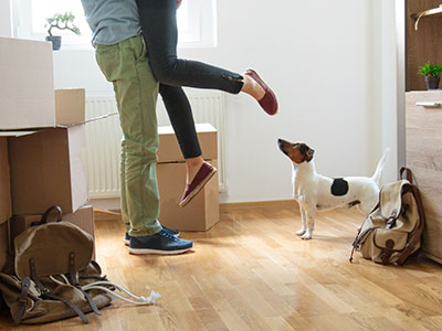 Two people's legs by a dog in a house with moving boxes
